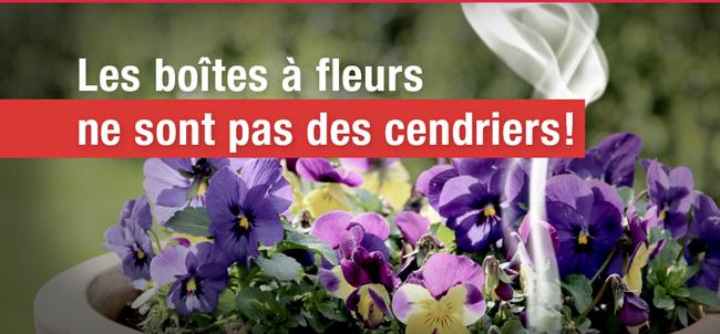 boites a fleurs