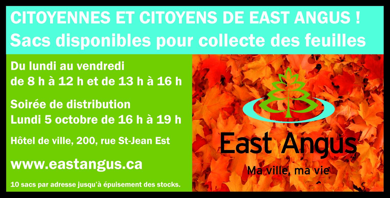 2020-09-24 - Publication Collecte de feuilles mortes