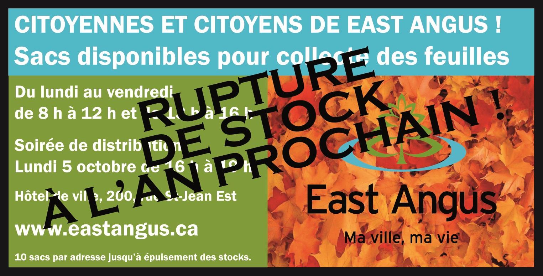 Rupture de stock - -Collecte-de-feuilles-mortes